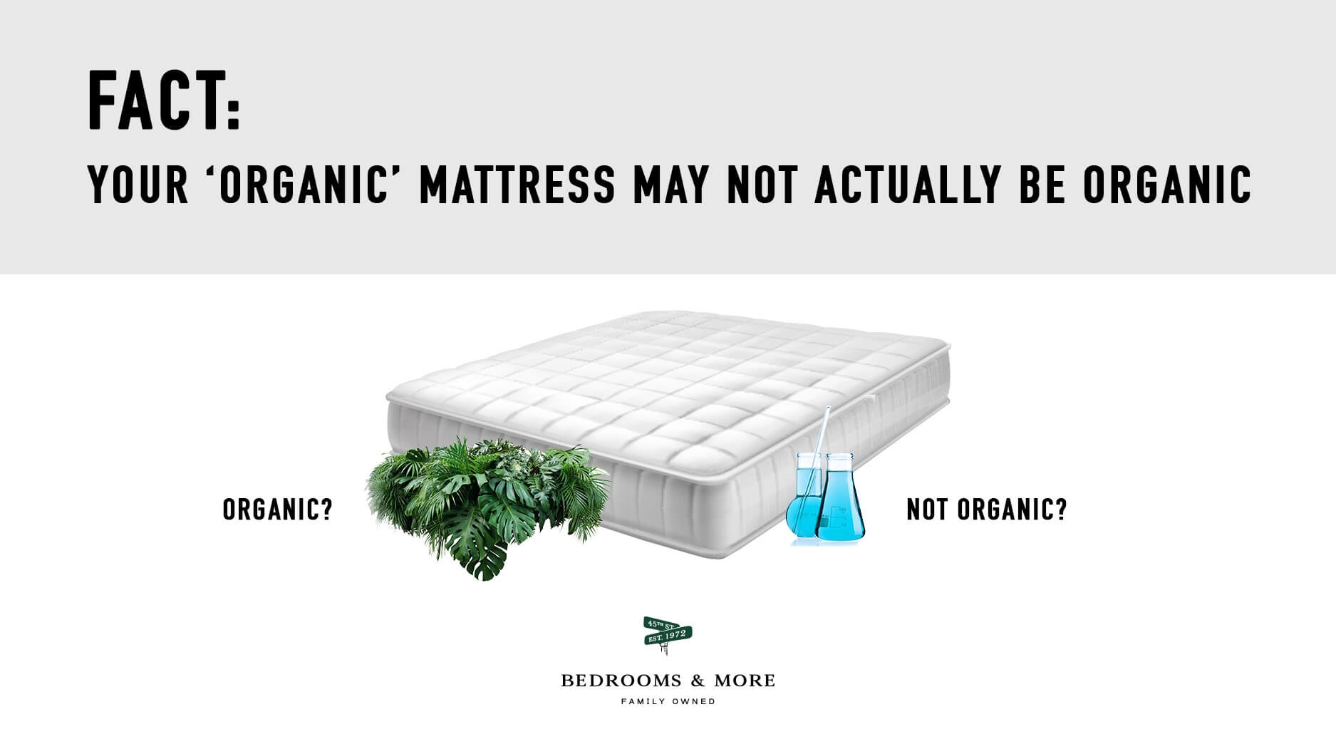 Organic Mattress or Not