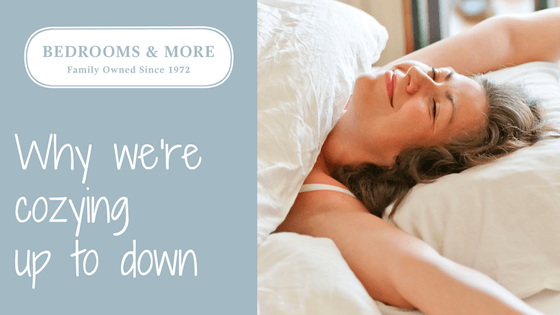 Down Bedding Blog Header