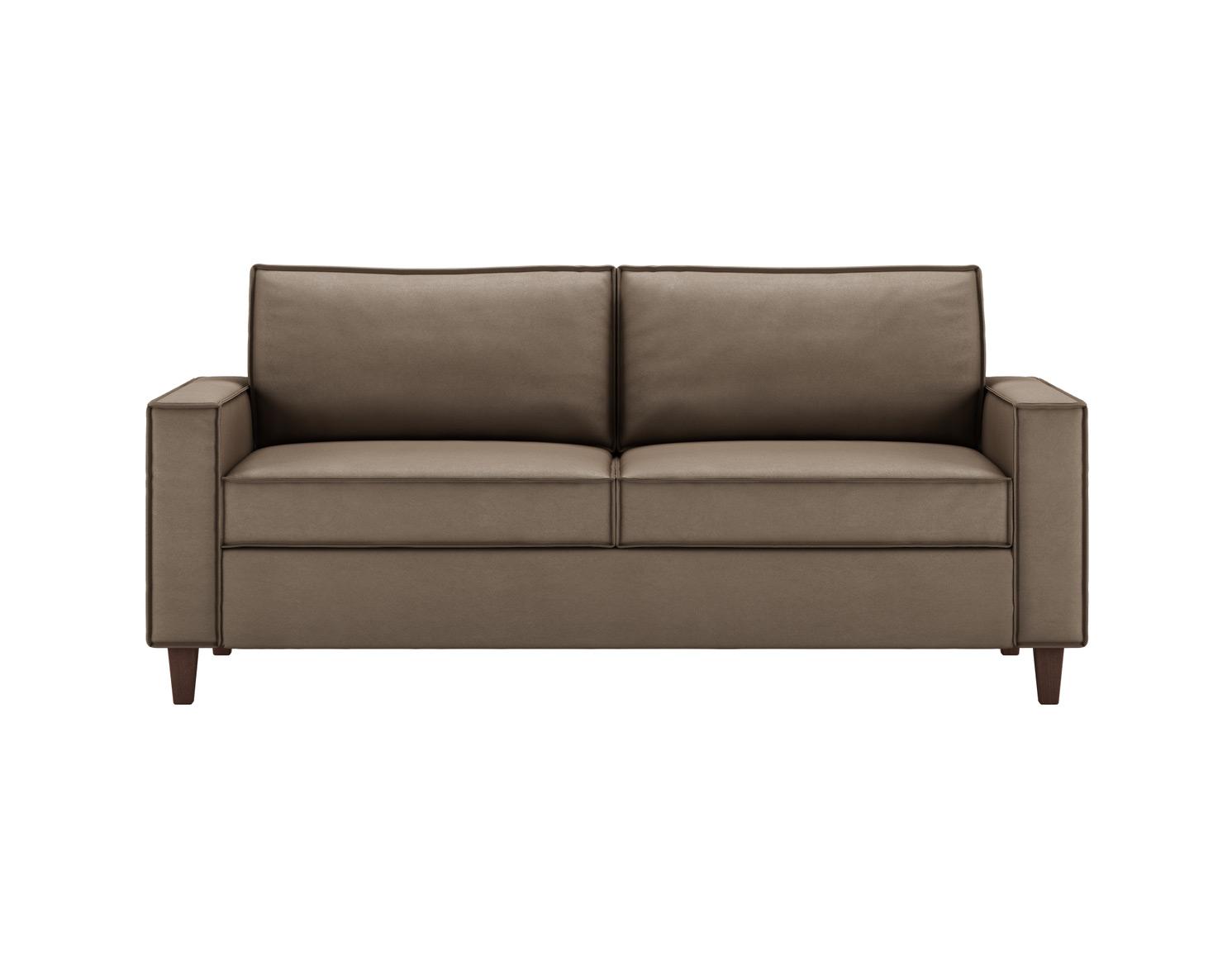 Mitc Contemporary Sleeper Sofa