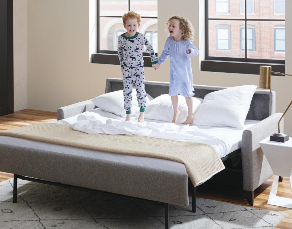 Harris Elegant Sleeper Sofa Kids Lifestyle