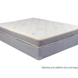 Whitman Elite Latex Mattress