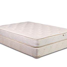 Therapedic Gaia Cotton Only Mattress Bedrooms and More Seattle