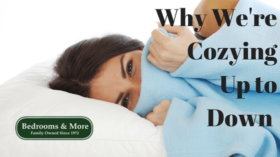 down bedding blog cover photo