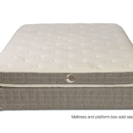 Whitman Plush Latex Mattress Front