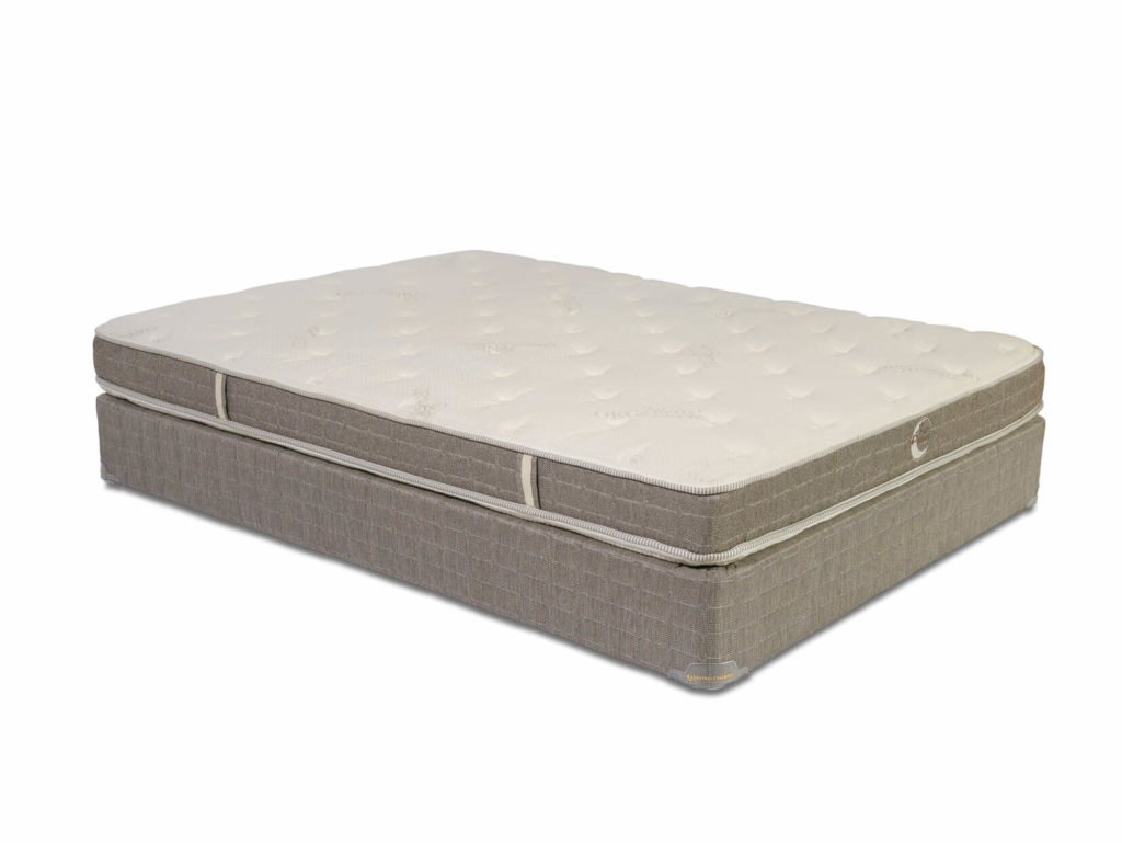 Whitman Plush Latex Mattress
