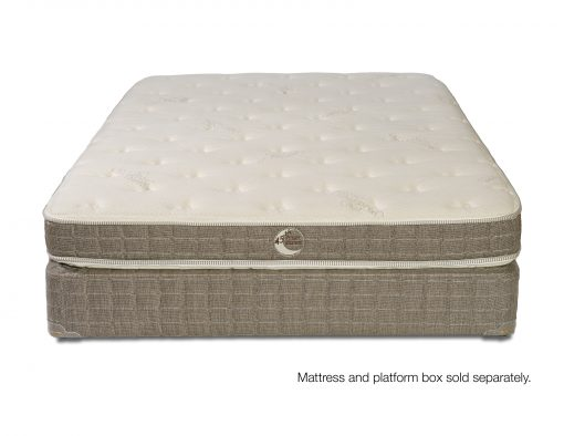 """Can bed be soft and supportive? The Whitman Plush says """"yes!"""""""